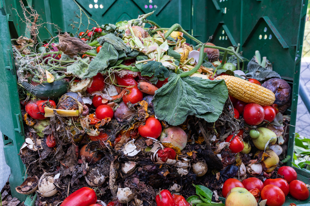Turning Agricultural Waste into Biopolymers